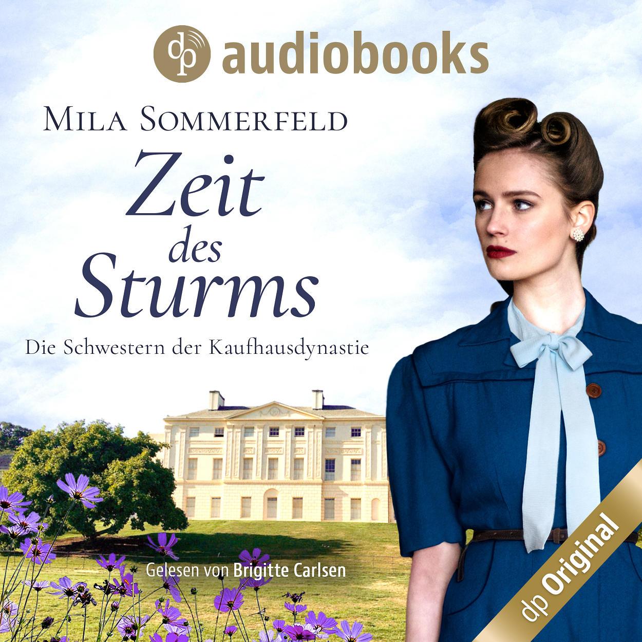 Audiobook - Zeit des Sturms